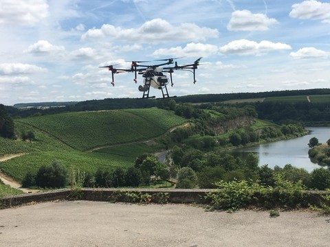 How Luxaviation is Using Drones for Vineyard