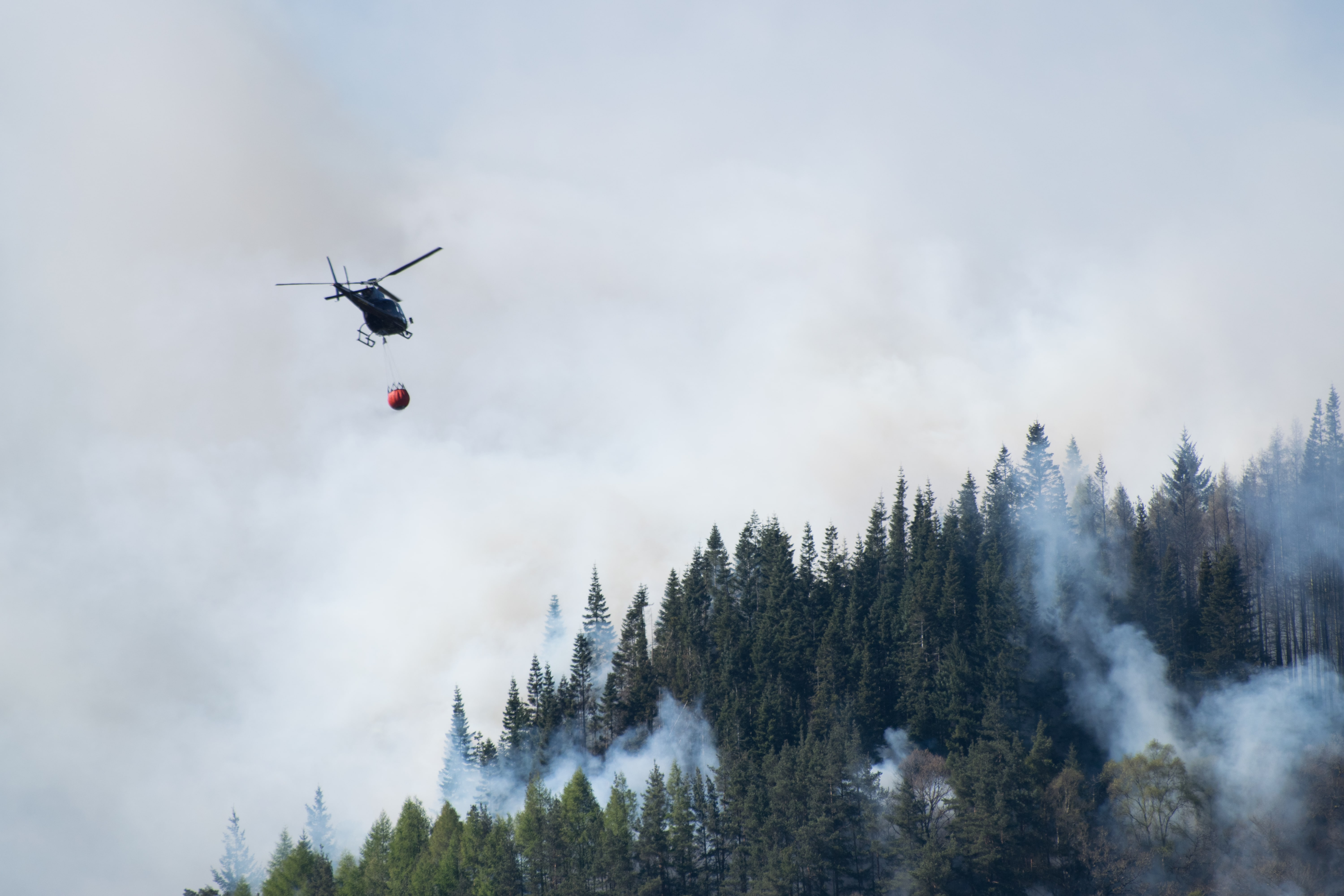 Firefighting helicopter hovers with a water bucket over a forest fire