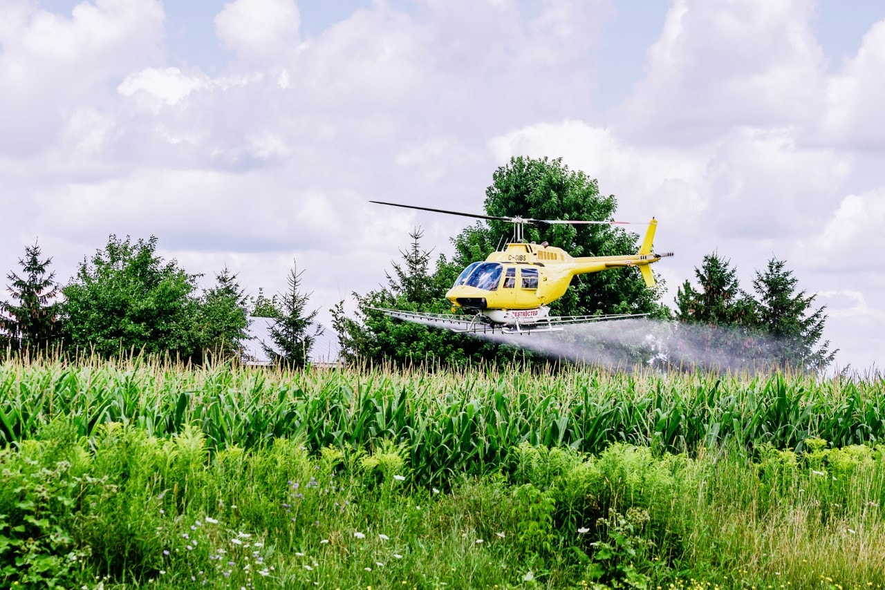 Helicopter spraying crops