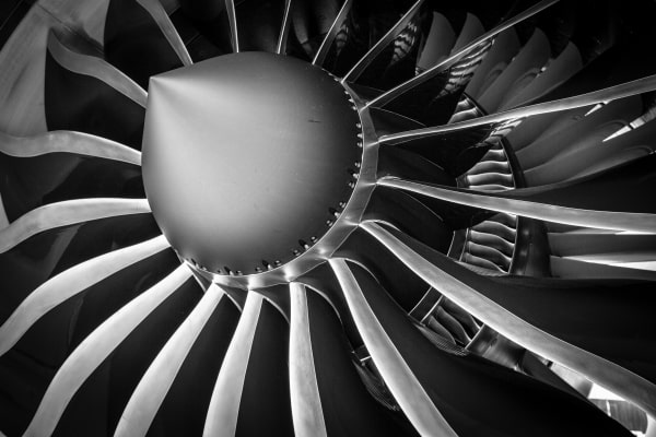 Private jet engine fan blades